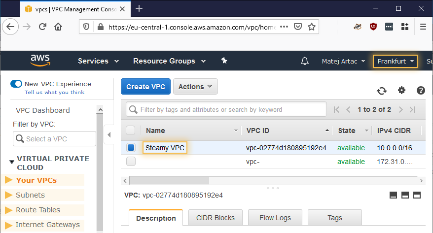 Newly created resources as can be seen in the VPC Console.